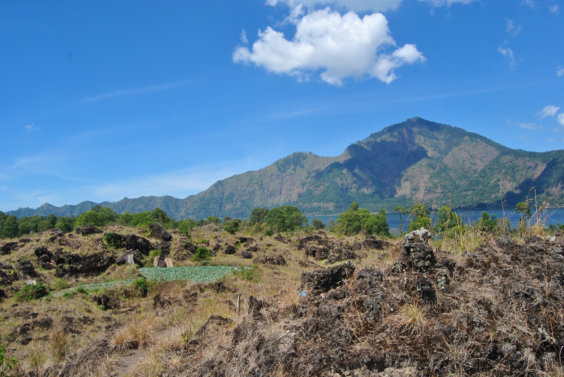 Kintamani Volcano & Lake Batur Private Tour