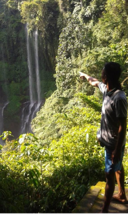 see sekumpul waterfalls from the top