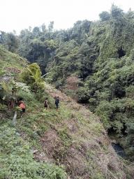 Hiking to visiting sambangan waterfalls with Bali Jungle Trekking Team Guide