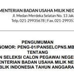 Download PDF Formasi CPNS 2021 Kementerian BUMN daftar di SSCN.BKD.GO.ID Login