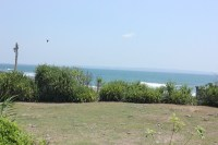 Land for sale in Pererenan 27,500 sqm beach front Price IDR 850,000,000 per 100 sqm(1are)