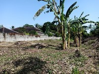 Land 2984 m for sale in Tabanan Bali