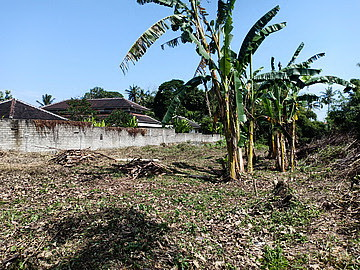 Land 2984 sqm for sale in Tabanan Bali