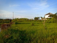 Land 1325m LTAB 132 Free hold for sale in Kedungu Tabanan Tanah Lot Bali