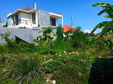 Land 460m for sale in canggu Bali