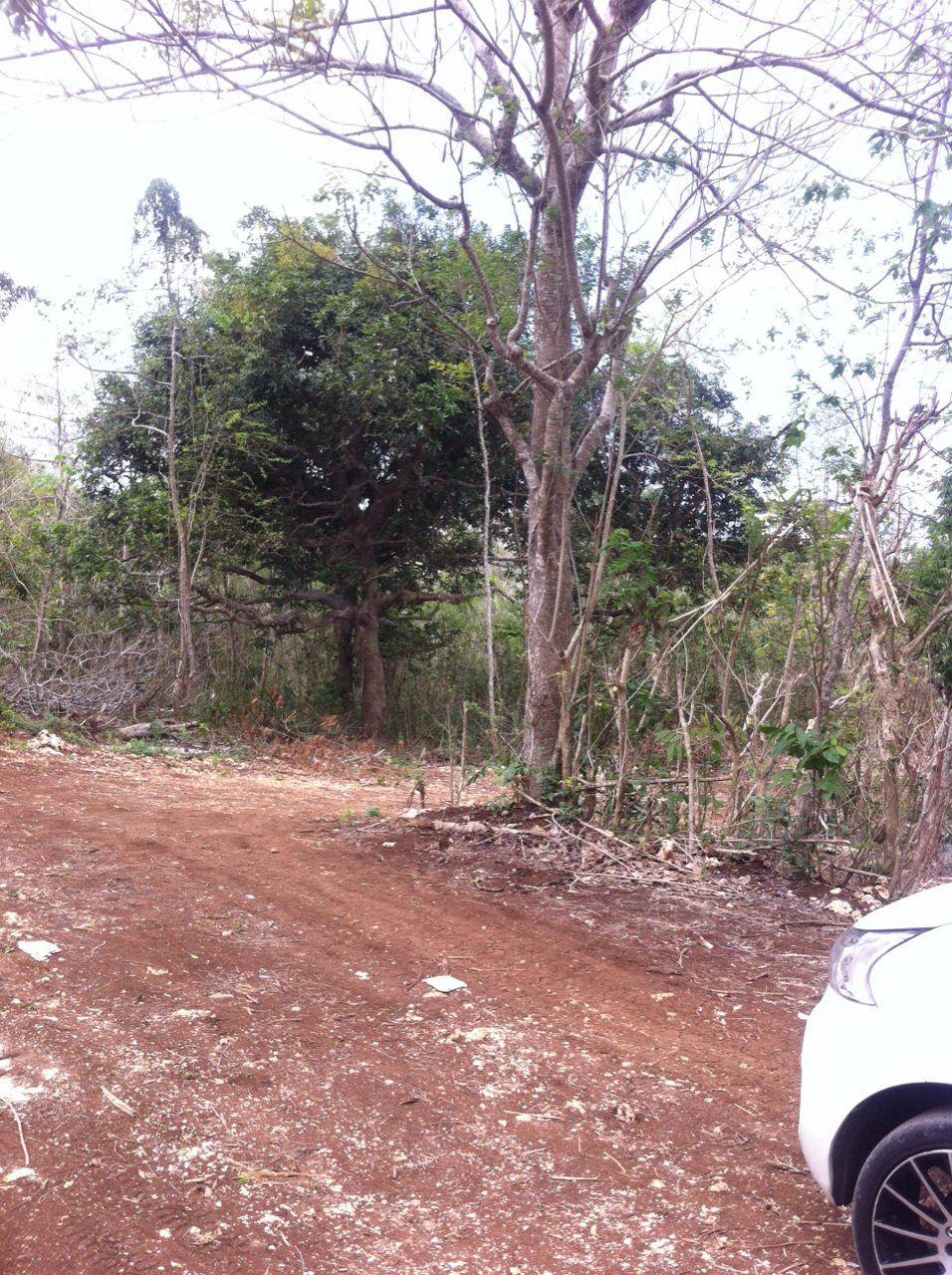 Land 12900 m for sale in Bukit Pecatu Jimbaran Bali