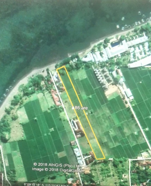 Beach front Land 8600 m for sale on Lovina Beach North Bali