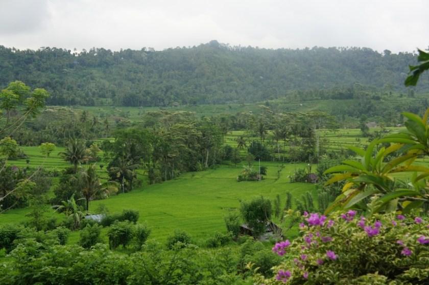 Fred, 3 semaines à Bali : la vallée de Sidemen (Karangasem, Bali)