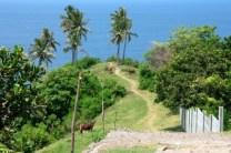 lombok balisolo indonesie amoureuse (8)