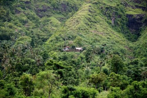 Une petite maison dans la jungle autour d'Amed, Karangasem, Bali
