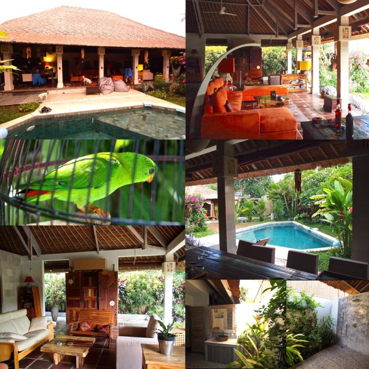 Retraite à Bali - Balisolo