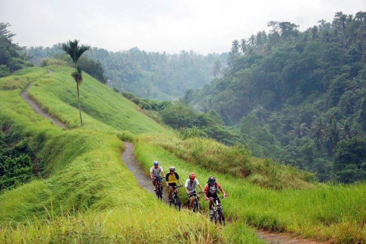 Balade en vélo dans les rizières de Bali