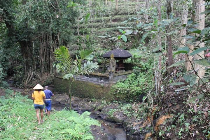 Tabanan - Shanti Travel Balisolo (222)