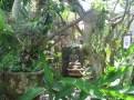Shantika B&B Big House - Lovina - Logement Balisolo (21)