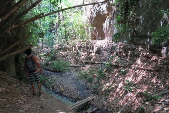 Gorge de Guwang à 30 minutes de Denpasar avec Youdi, Guide Balisolo 2015 (25)