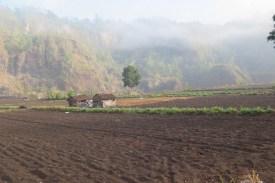 Village Batur avec Abang Marwiayan - 2015 Balisolo (42)