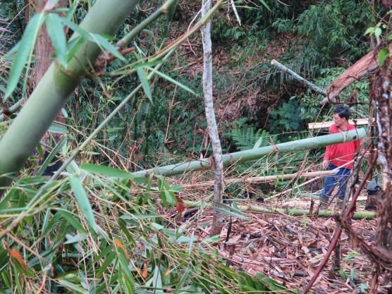 Balade dans les rizères de Langgahan avec Made Ocong - Balisolo (26)