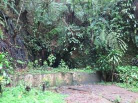 Balade dans les rizères de Langgahan avec Made Ocong - Balisolo (8)