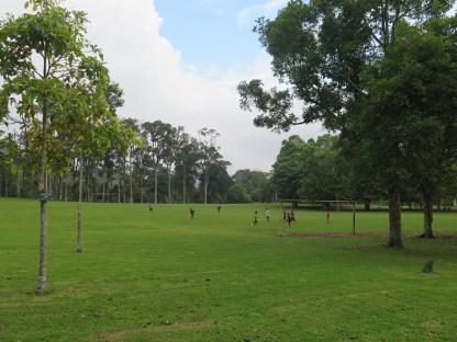 Le jardin botanique de Bali - Bali Botanic Garden - Bedugul - Balisolo (33)