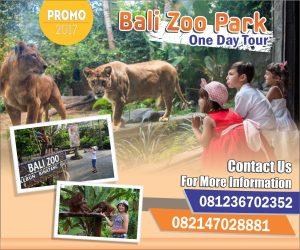 Paket Bali Zoo
