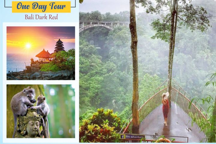 Tanah Wuk Sangeh one day tour BTH 383 Bali Dark Red