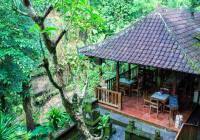 Murni Ubud Stall , A Legendary Place To Eat Since 1974