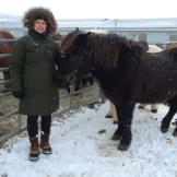 Aber man war nicht Island, wenn man nicht auf dem Rücken eines isländischen Pferden saß (Fotos: Markus Hofmann/white-photo.com)