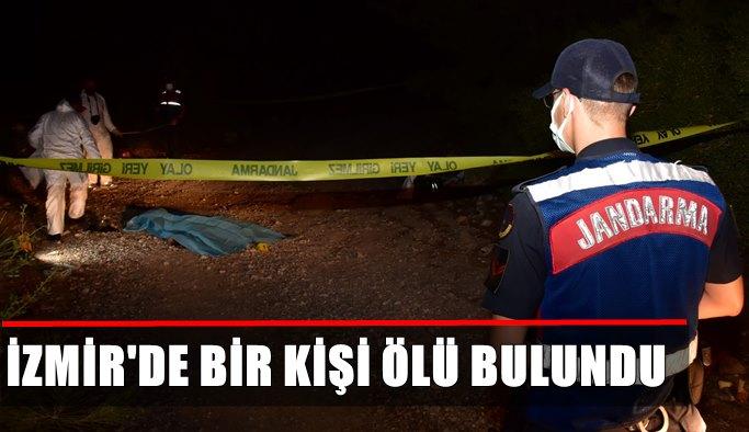 İzmir'de ormanlık alanda erkek cesedi bulundu