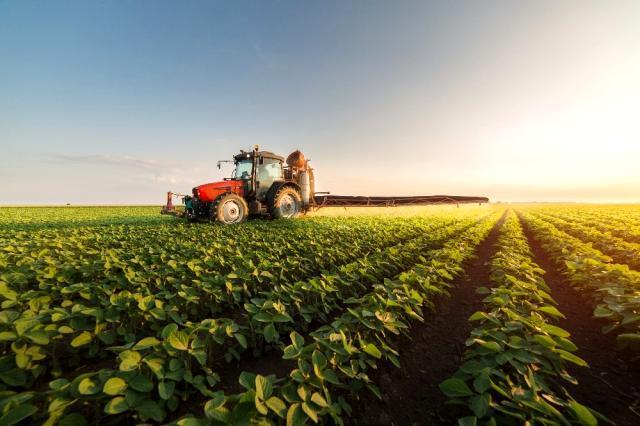 Organik tarım sektöründe büyük güç birliği