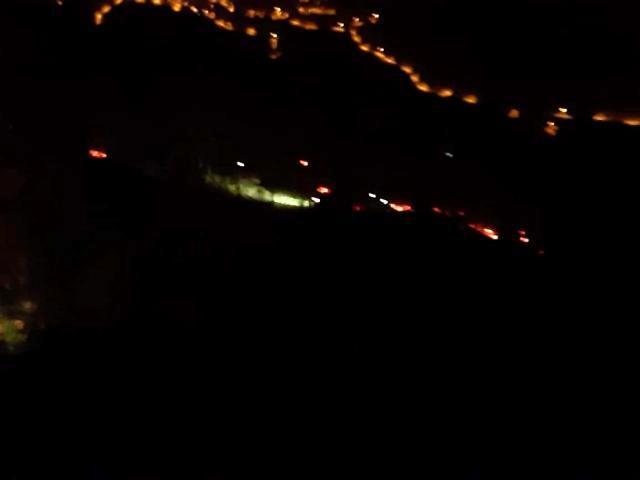 Son dakika haber! İzmir'de orman yangını: 500 kestane ve meşe ağacı yandı