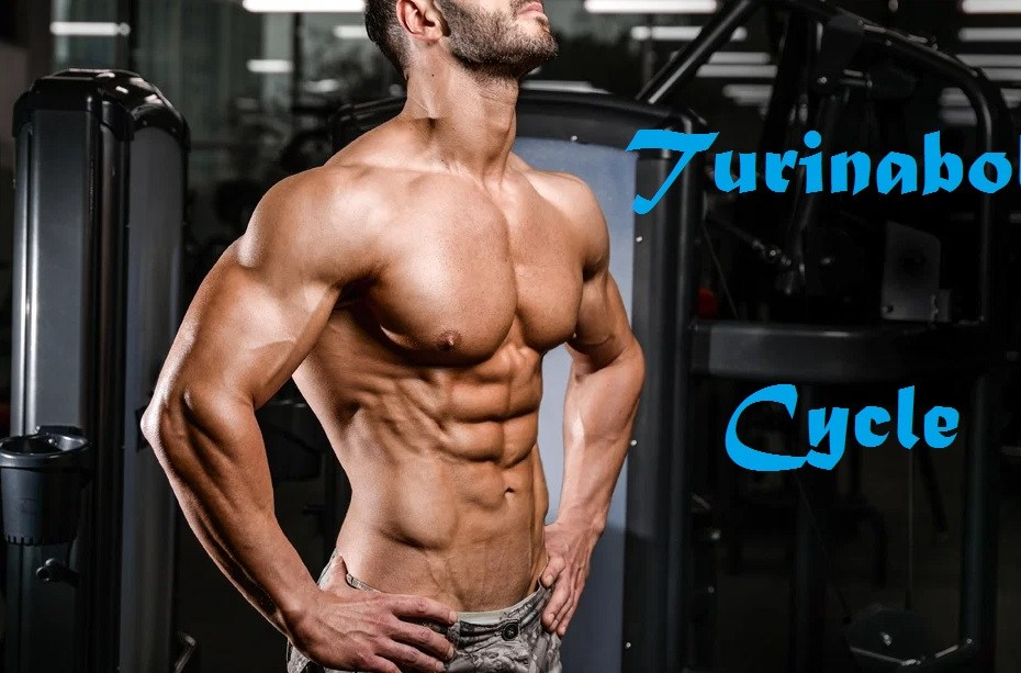 turinabol-cycle