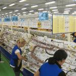 Jura demantuje da će deo proizvodnje izmestiti iz Srbije i otpustiti radnike