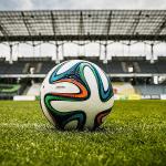 Zaplenjeno više od milion evra od fudbalskih menadžera Jankovića i Veljkovića