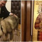 Vučić slavi 49. rođendan. Patrijarh mu polonio ikonu, patrijarhov sekretar šarplaninca