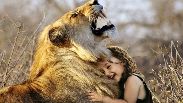 """Pet """"ljudskih"""" emocija koje i neke životinje mogu da osete"""