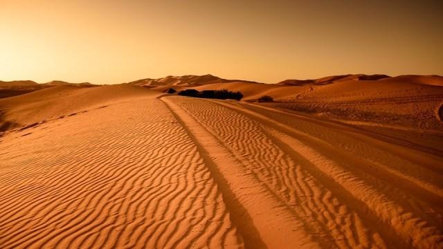 Klimatske promene: Svet ide ka najtoplijoj deceniji, kažu meteorolozi