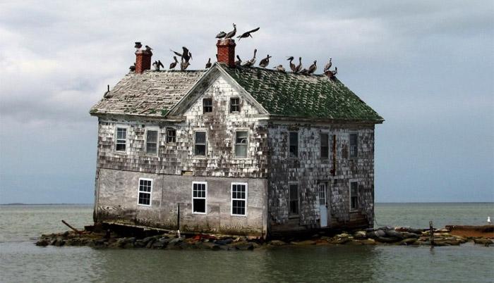 07 - Holland-Island-Chesapeake-Bay