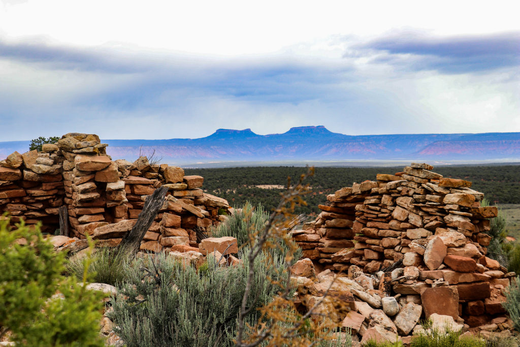 Depopulated Mesa Top Structure and Bears Ears Buttes