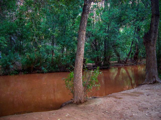 bad decision making flash flood havasu creek wilderness medicine magazine