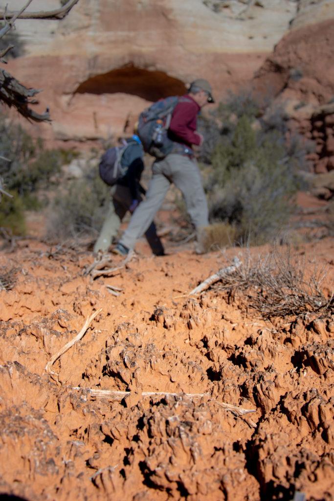 cryptobiotic soil southwest hiking