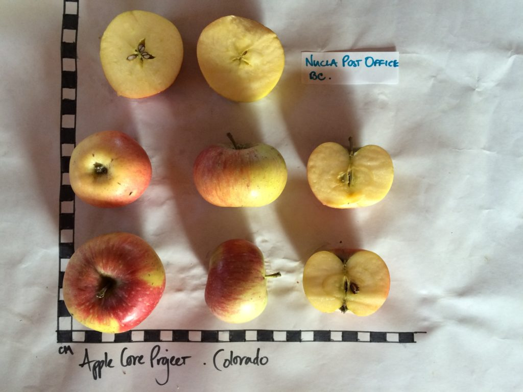 west end colorado apple core core project nucla post office