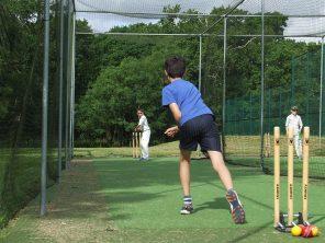 2016.7.25 BC cricket (2)