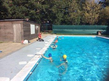 Ballard School Swimming Peer Assessment