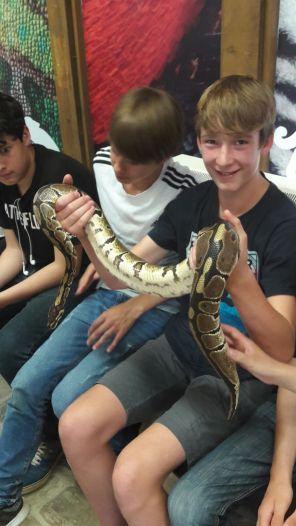 Ballard Longleat snake