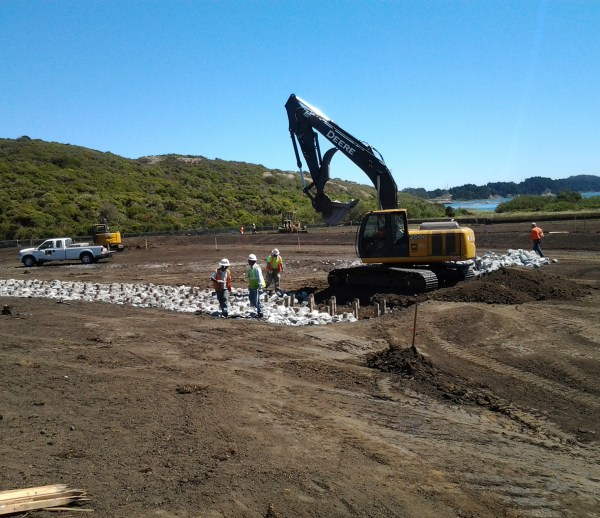 Job 176 - SFPUC Crystal Springs Reservoir Watershed Revegetation