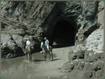 Lalo Tours, cabalgatas en Ojochal, #horse #backriding #enjoy #ballenatale #costaballenalovers #ojochal #lalo #tour 10