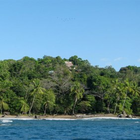 Corcovado National Park -South Pacific - Costa Rica