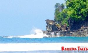 Punta Achiote - Playa Hermosa - Costa Rica - Photo by Dagmar Reinhard