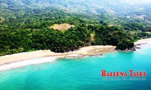 Playa Arco, Uvita, Costa Rica, Costa Ballena