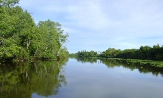 Sierpe de Osa, Pacífico Sur de Costa Rica